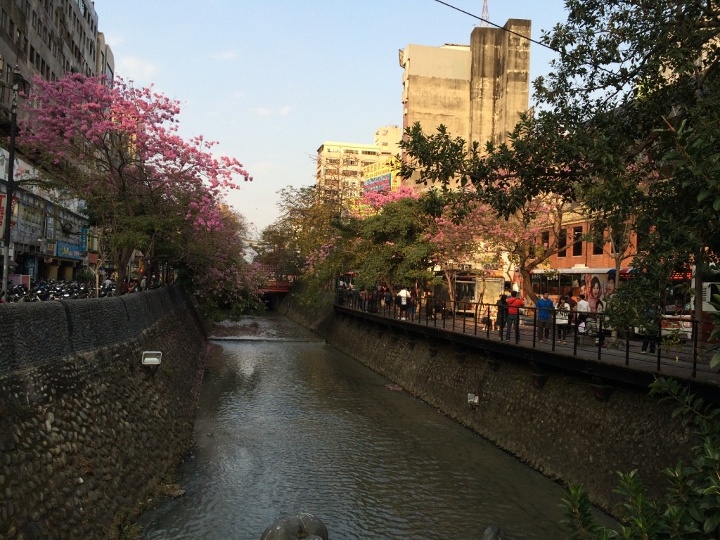 Taichung has a bunch of canals and bridges as you walk through the city
