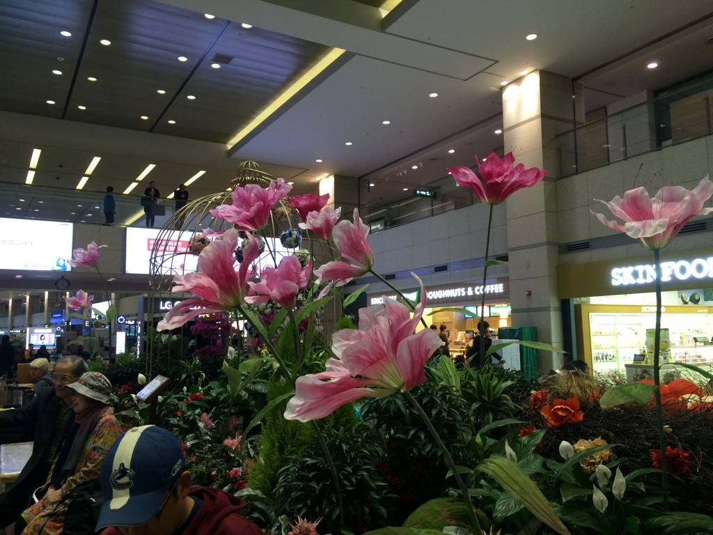Incheon Airport - pretty flower display