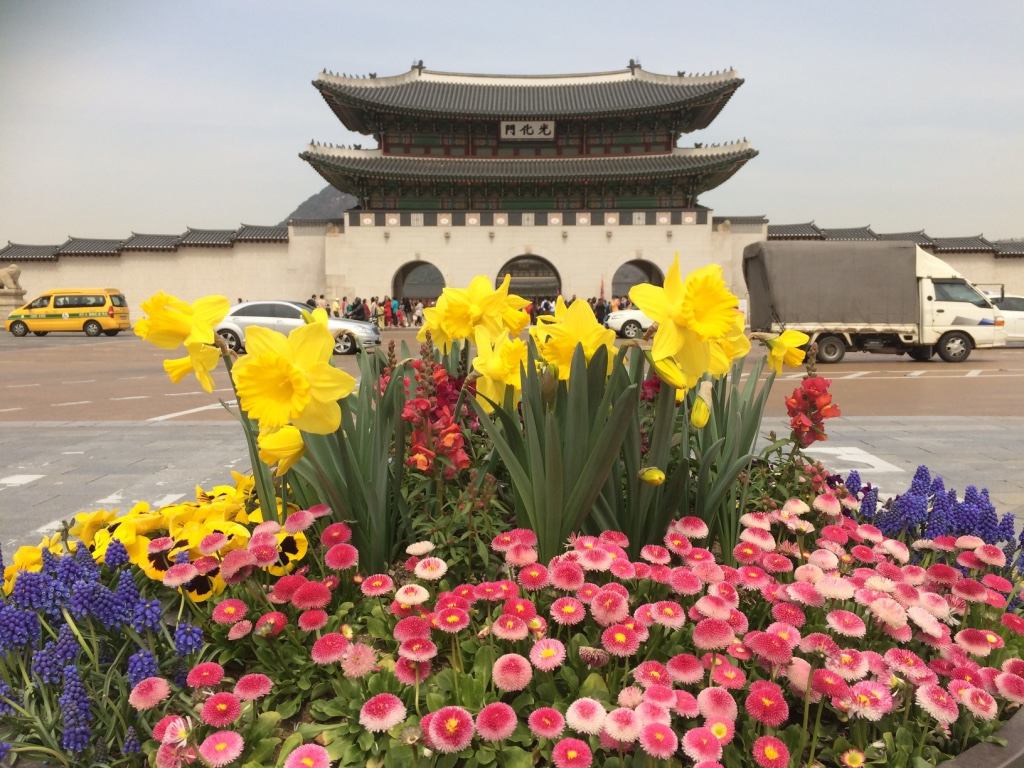 Seoul (Day 31): Spring has Sprung