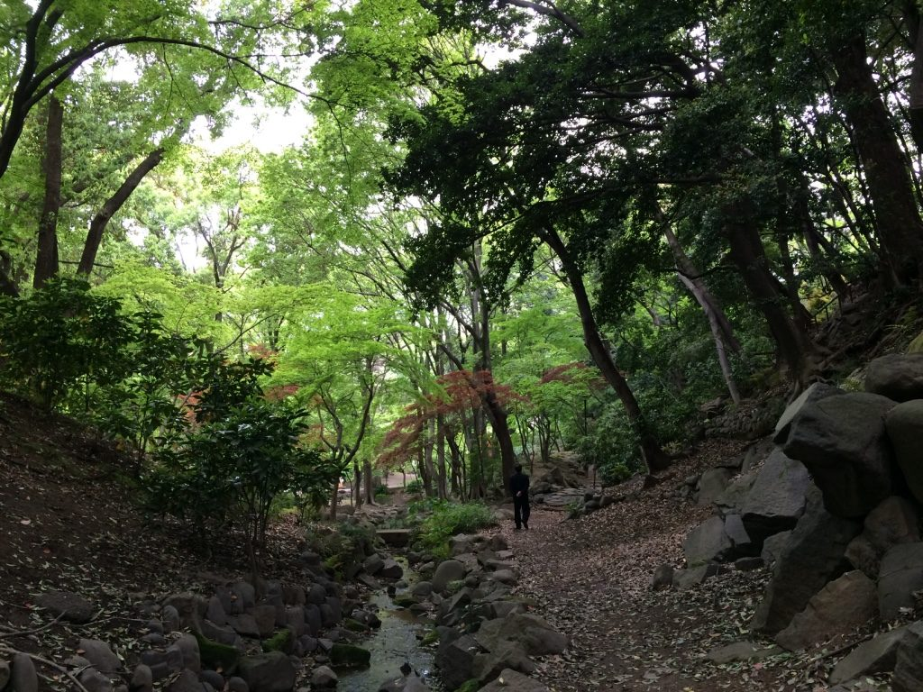 Little forest right beside Tokyo Tower