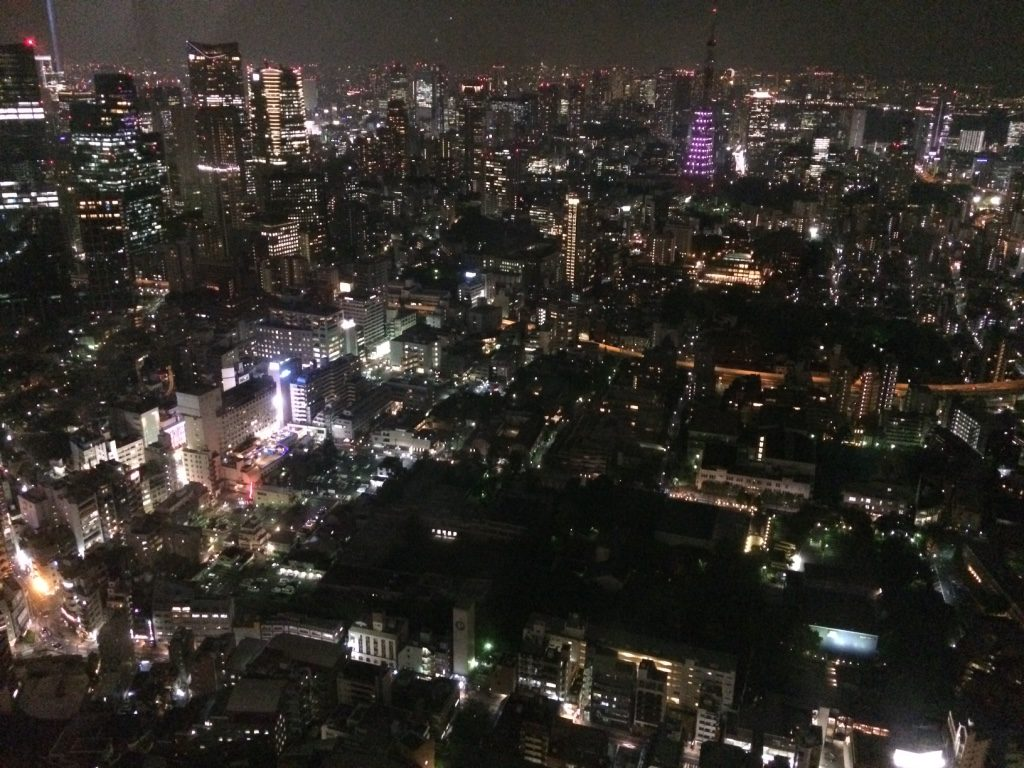 View of Tokyo. Tokyo Tower was lit purple half way (we think) to honour Prince.