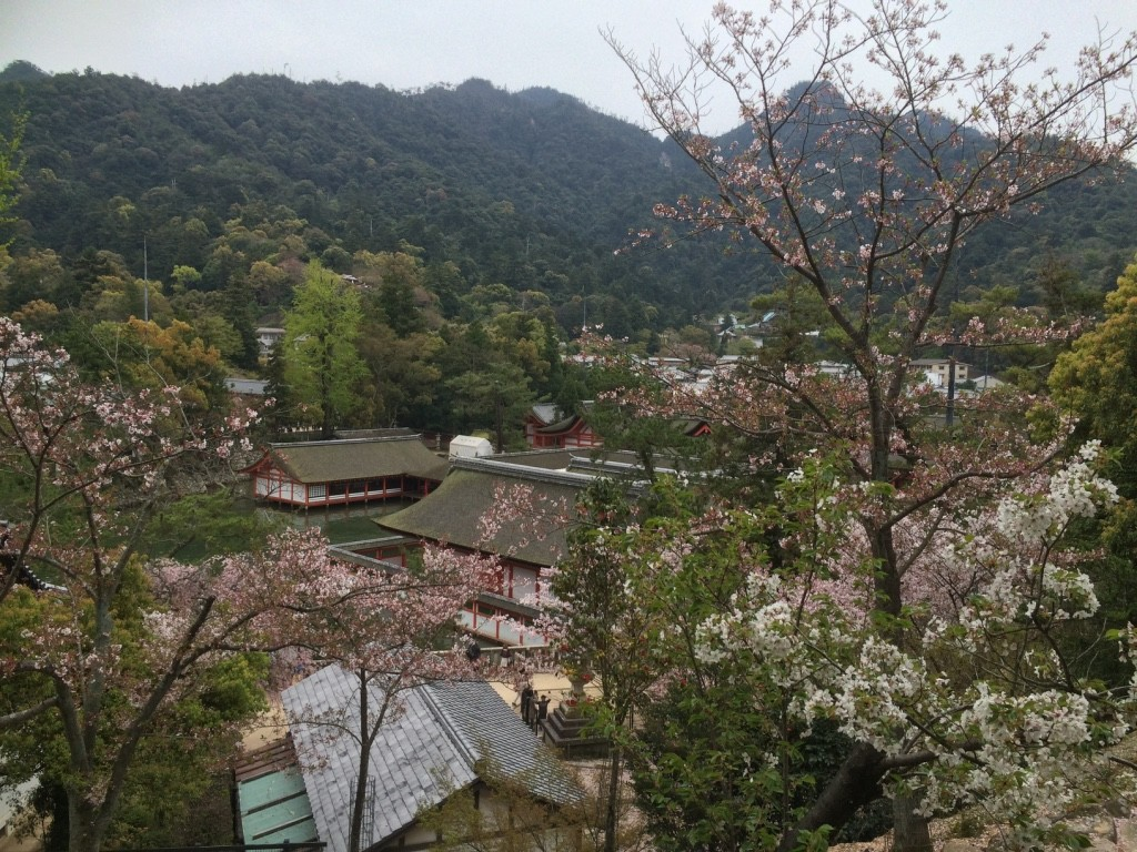 View of the town from the temple. There were a lot of locals picnicking around the temple grounds