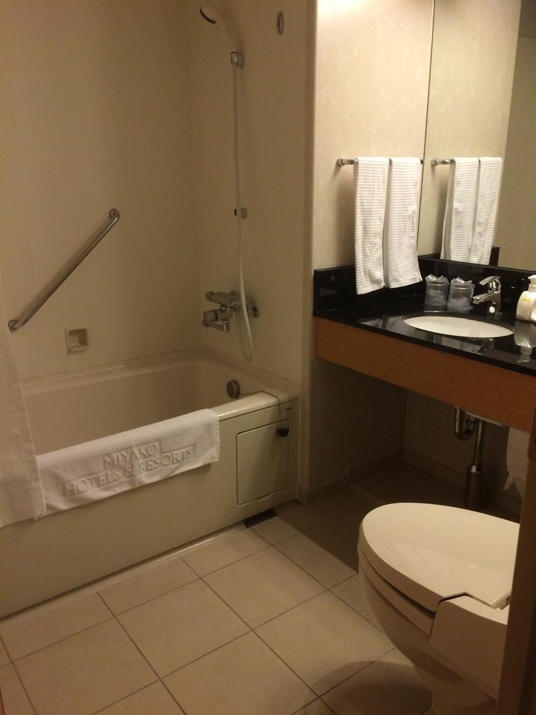 Large bathroom by Japanese standards