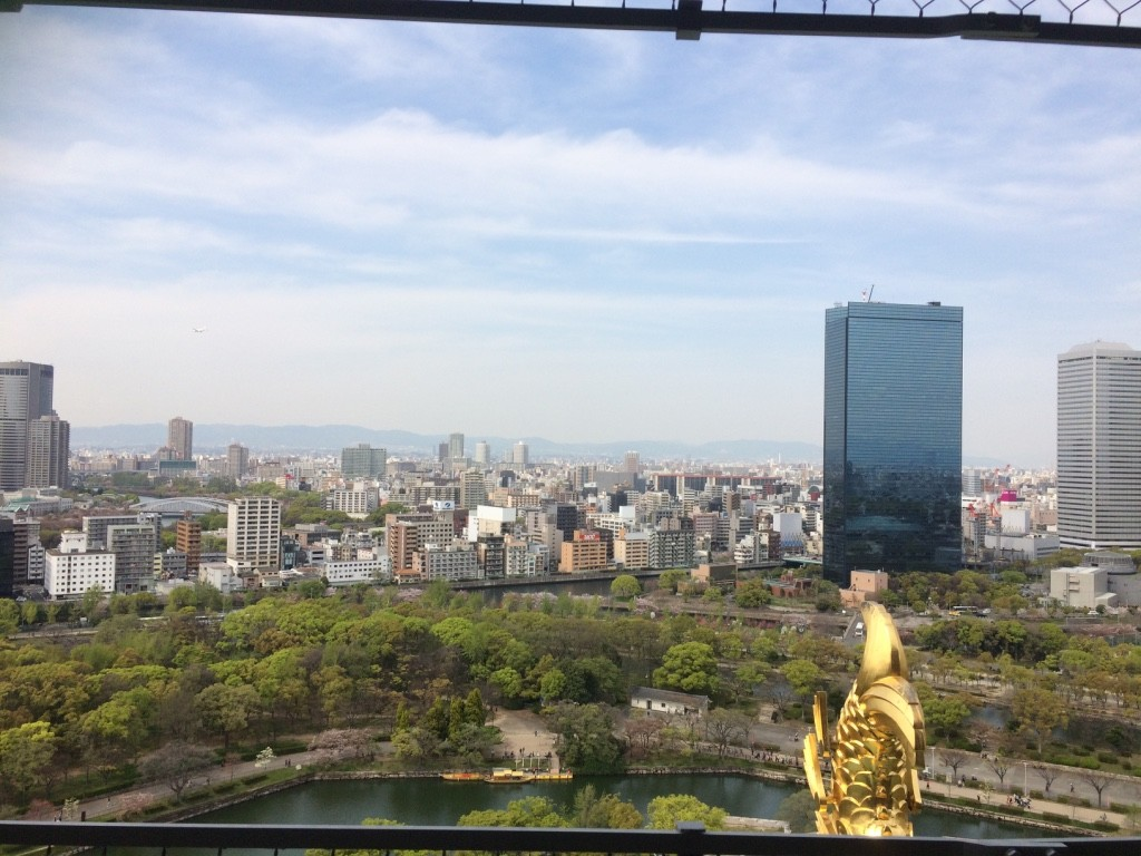 View from the top of Osaka Castle. There's meshing around the whole top.