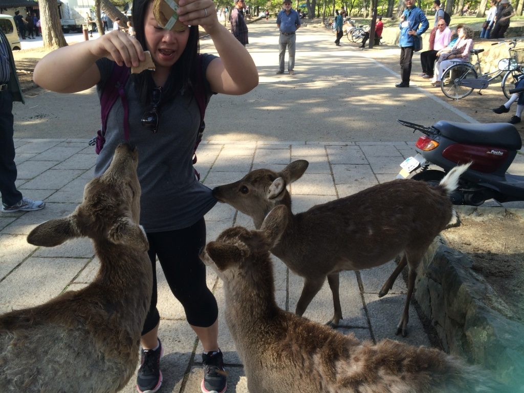 Me freaking out when I was feeding them. My stack of crackers lasted less than 30 seconds.