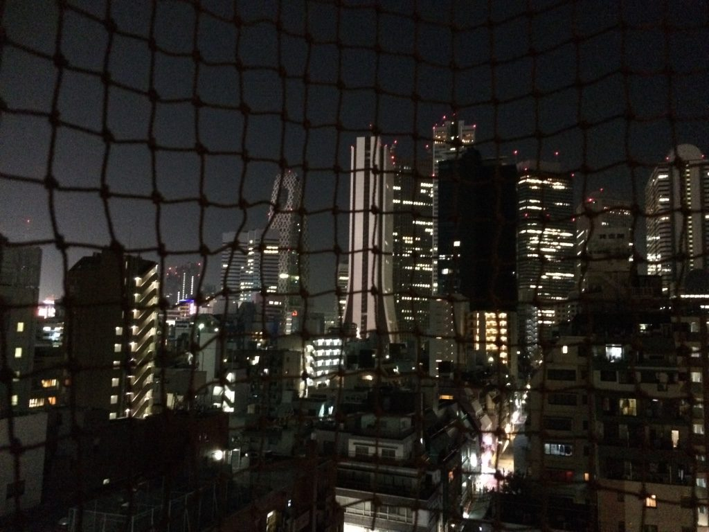 View from our balcony of Shinjuku area. It's unfortunate that there's meshing.