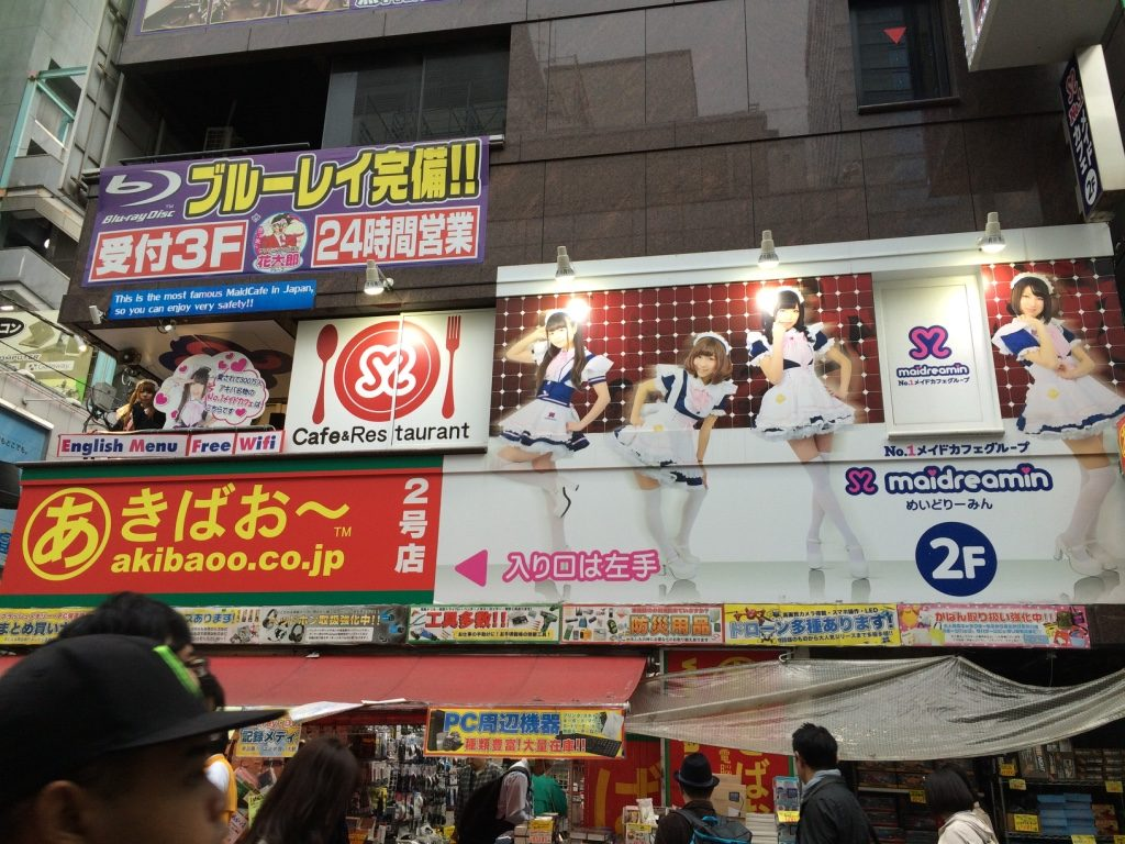 "Akihabara has a lot of ""Maid Cafes"" with girls dressed up as maids on the street trying to get you to upstairs."