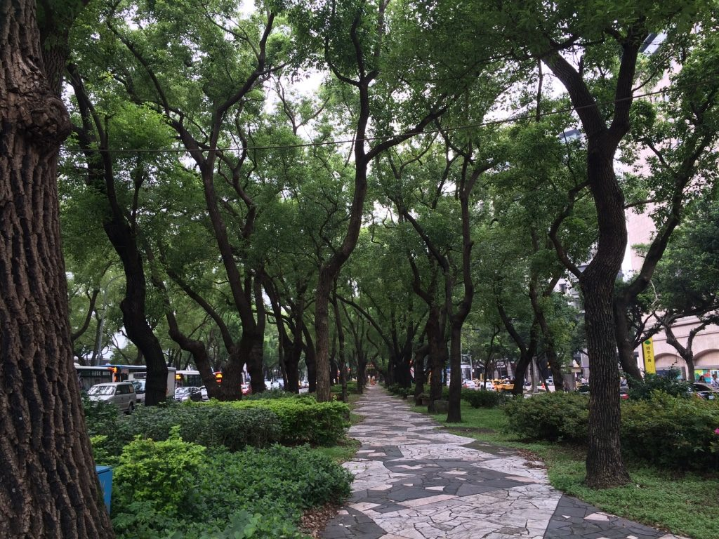 Dunhua boulevards are all tree lined
