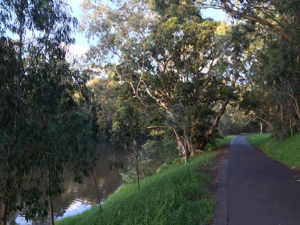 Yarra River walkway behind the apartment