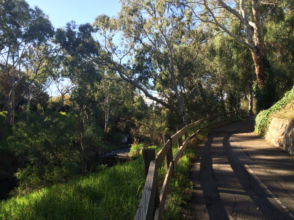 Walkway along the Torrens River