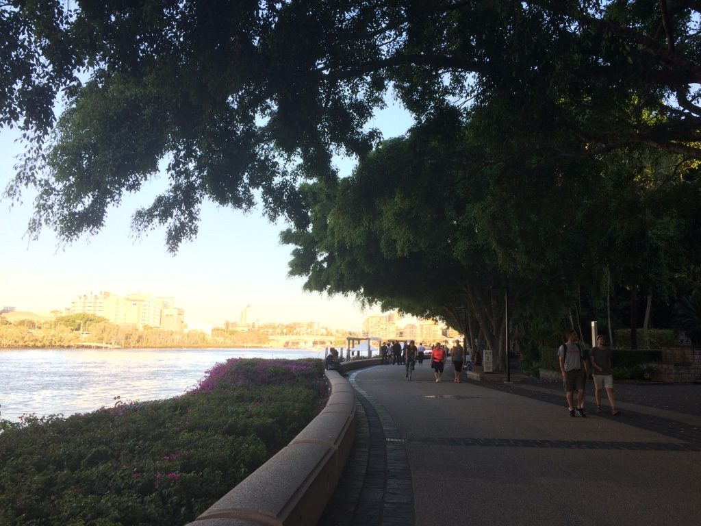 Walking along the south bank of the Brisbane River