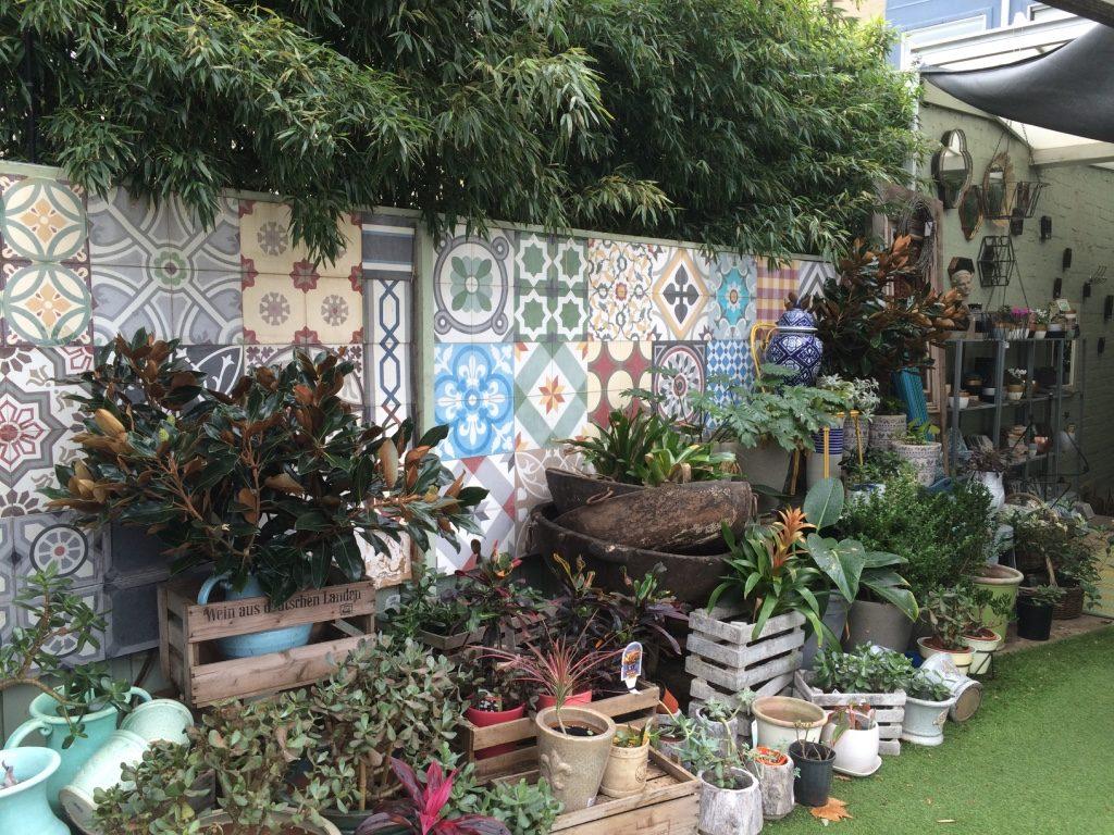 Cute little garden shop in Surry Hills