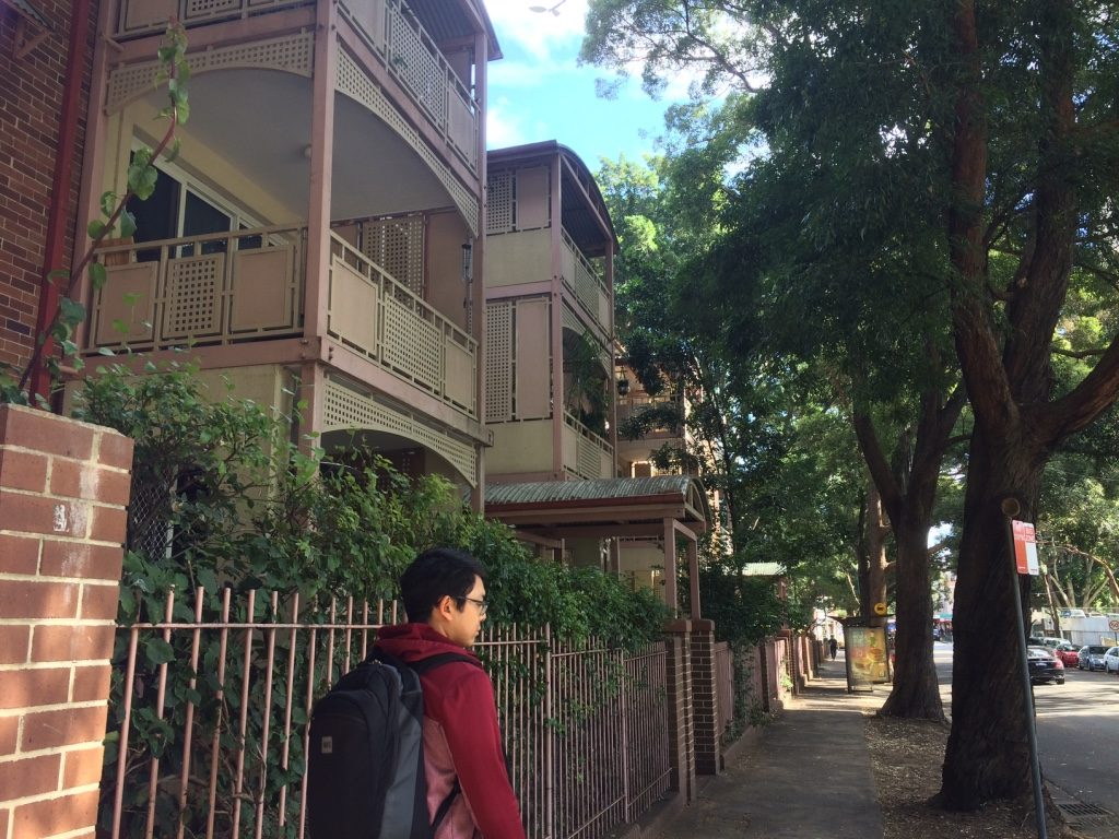 Walking through tree lined Sydney residential streets.