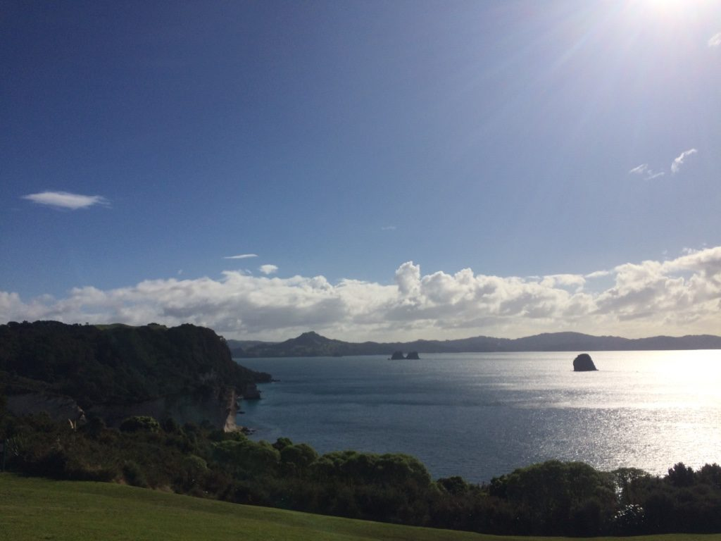 The start of the Cathedral Cove hike which weaves up and down the mountain to get to the beach.