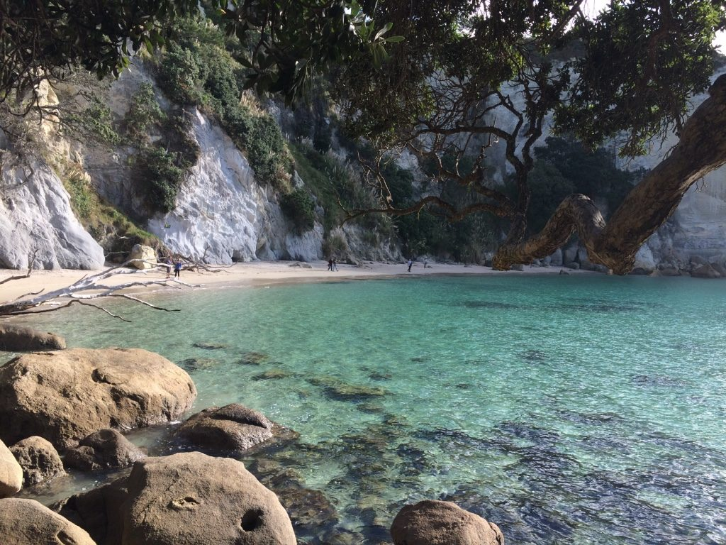 Stingray Bay - Walked down to this beach on the way back to the car