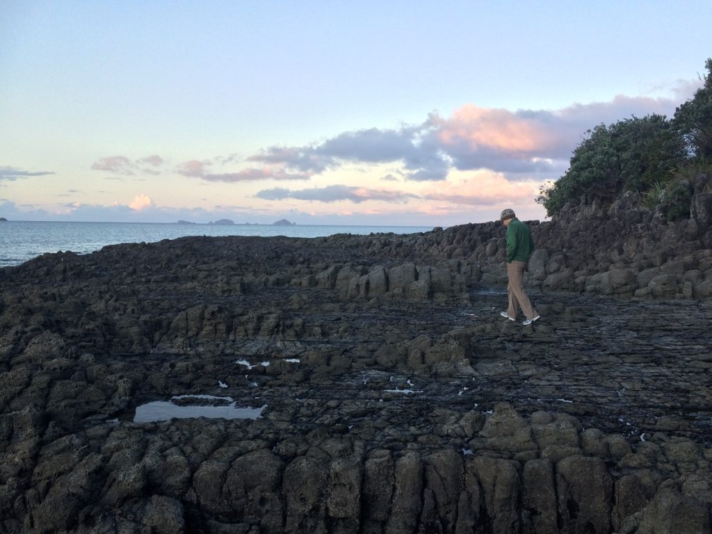 Robin checking out the volcanic rocks
