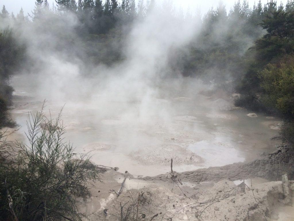 Mud Bath at Waiotapu