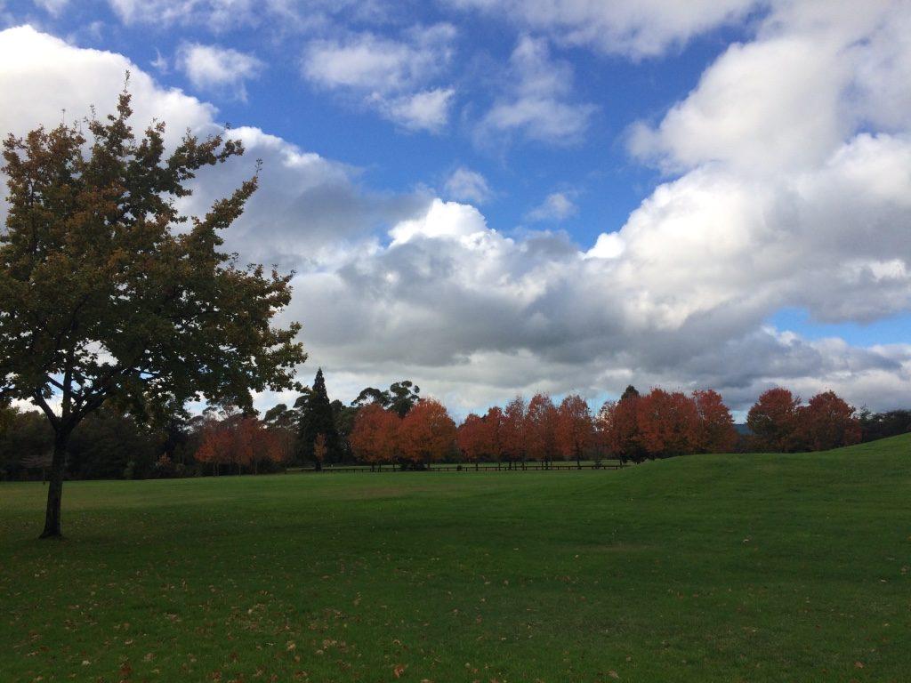 Still looks like Autumn to me. Winter officially starts tomorrow.