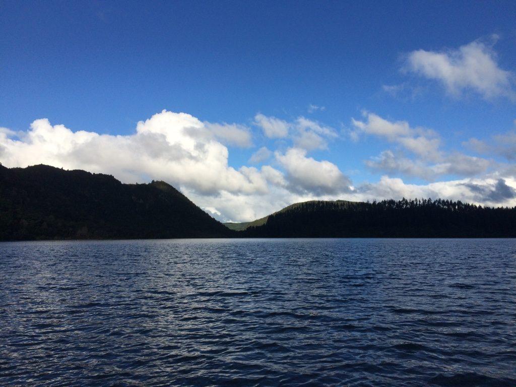 Lake Tikitapu (this totally looks like BC)
