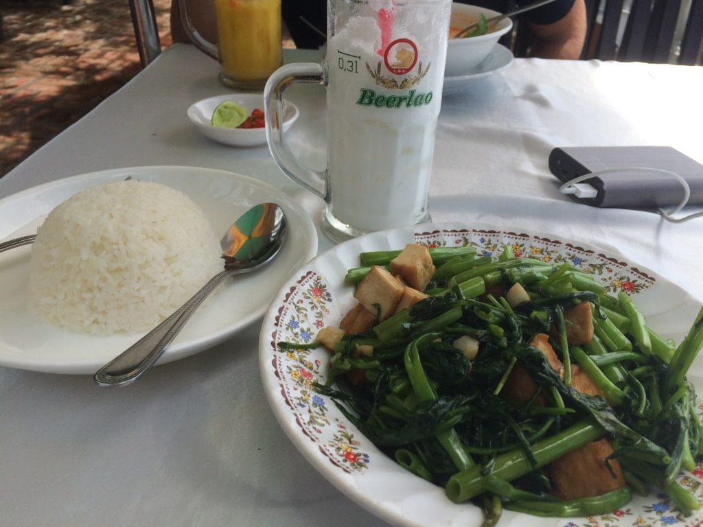 My morning glory with garlic and tofu. Our coconut and mango shakes in the background