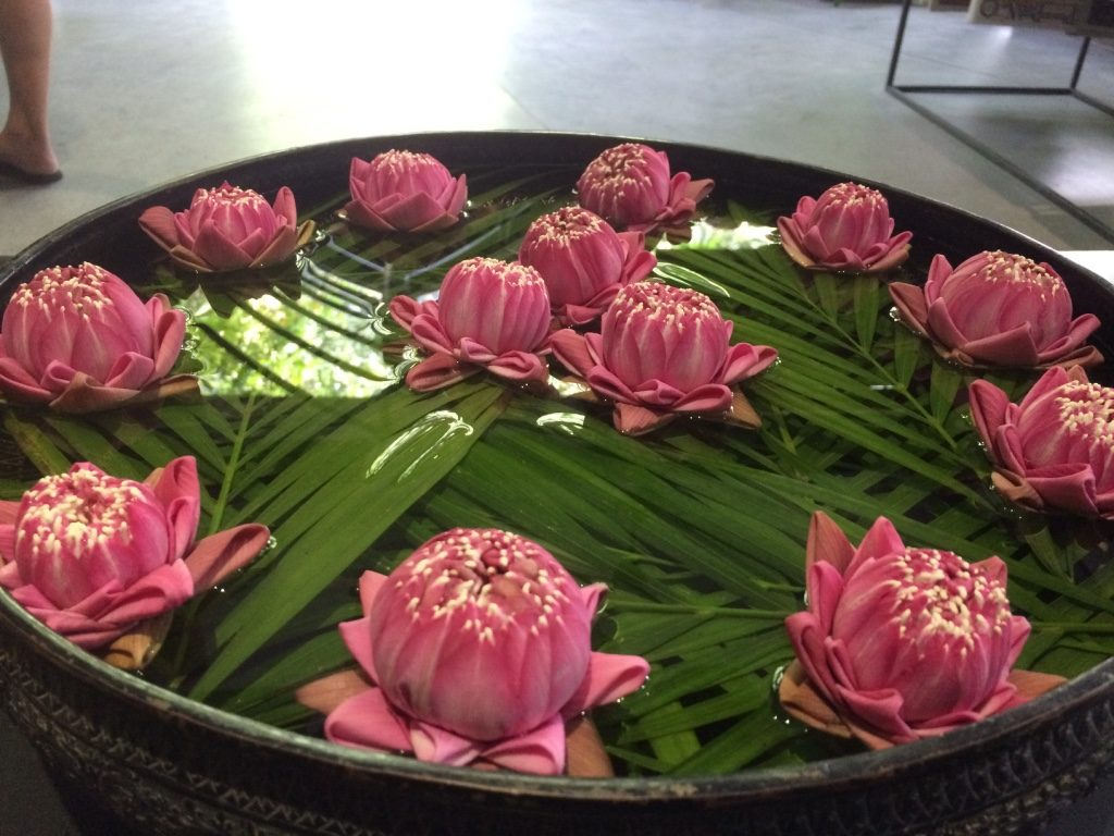 Beautiful lotus flowers in the lobby
