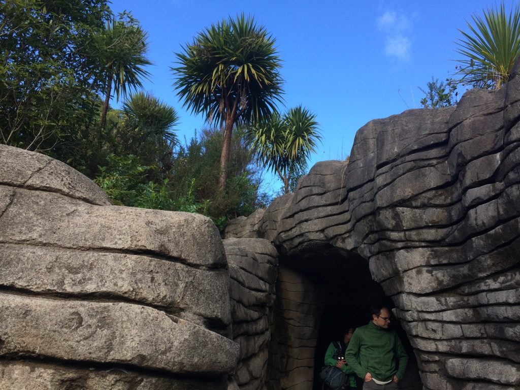 Entrance of the Ruakuri Caves