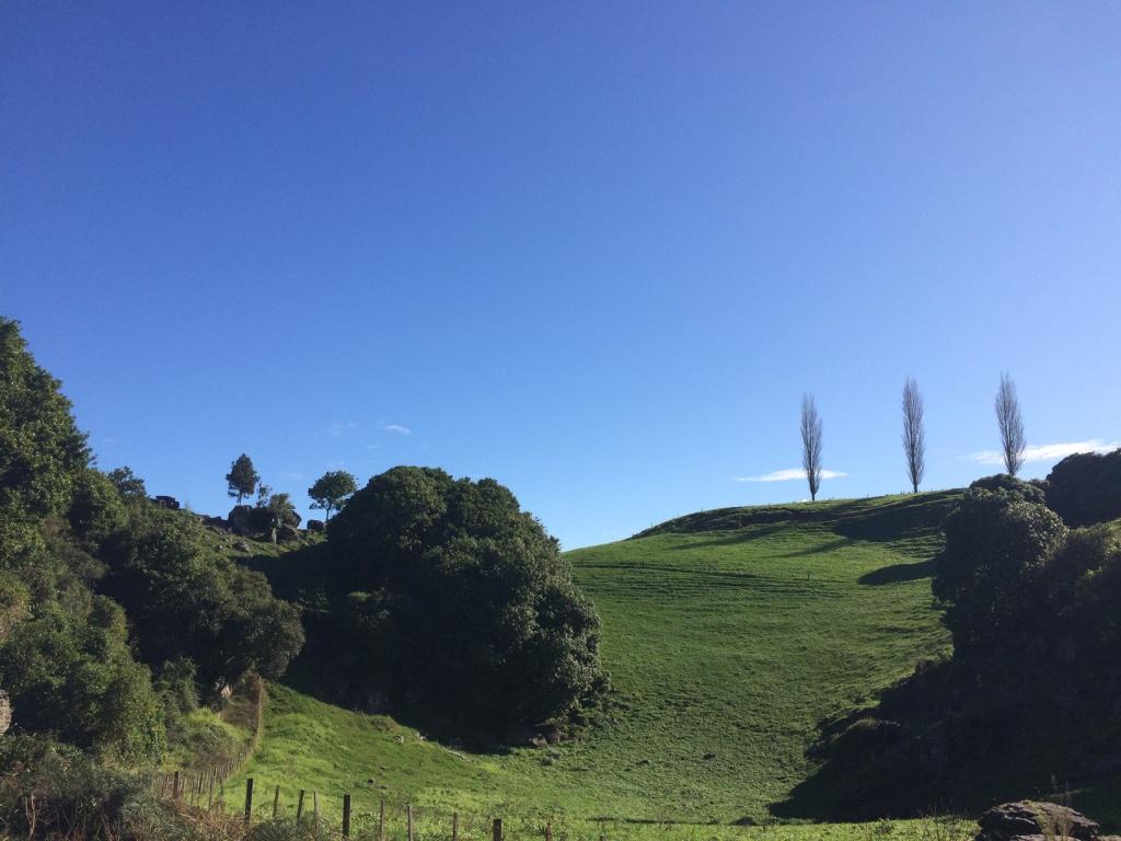 Waitomo (Day 93): Ruakuri Cave and Glowworms