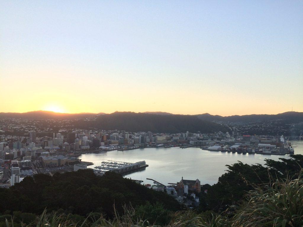 Wellington from Mt. Victoria