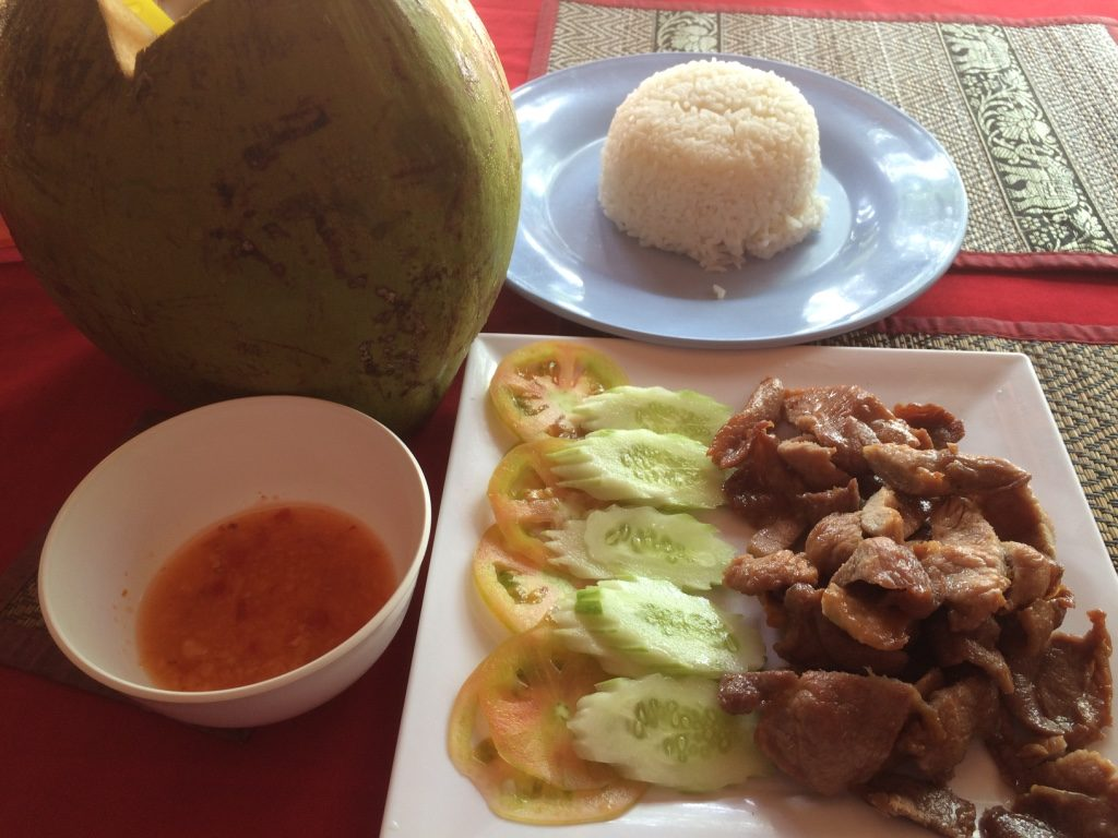 Pork and rice ($6.50 USD) and coconut ($1.50 USD)