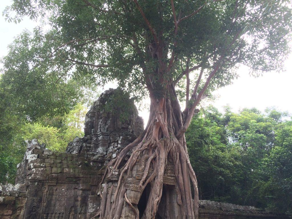 Tasom Temple